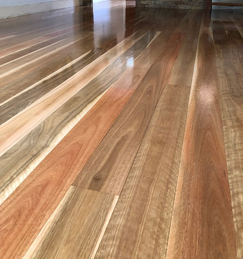 Engineered-Timber-Flooring-Spotted-gum